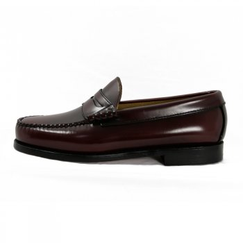 weejuns loafer